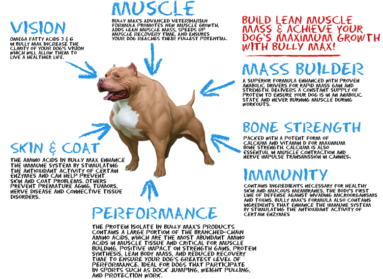 Dog Muscle Building Supplements Uk